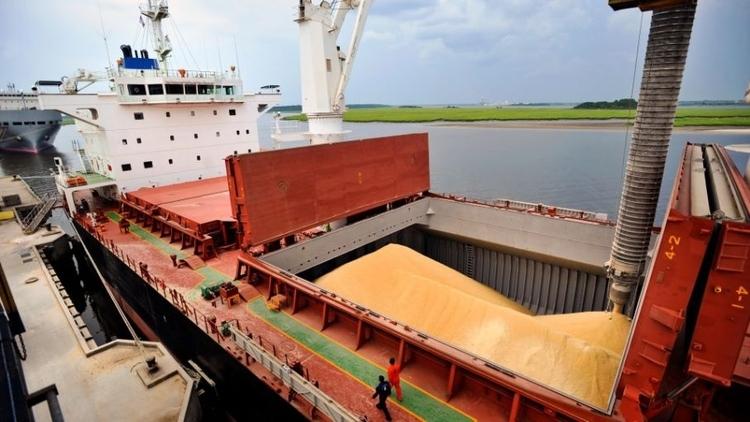 importancia-medidas-de-seguridad-y-preparativos-para-la-fumigacion-de-barcos