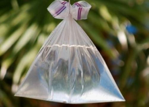 bolsa-agua-molestos-zancudos