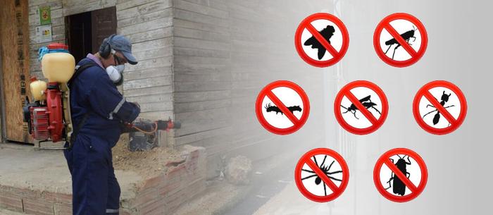 Todo-lo-que-debe-conocer-sobre-las-fumigaciones-industriales