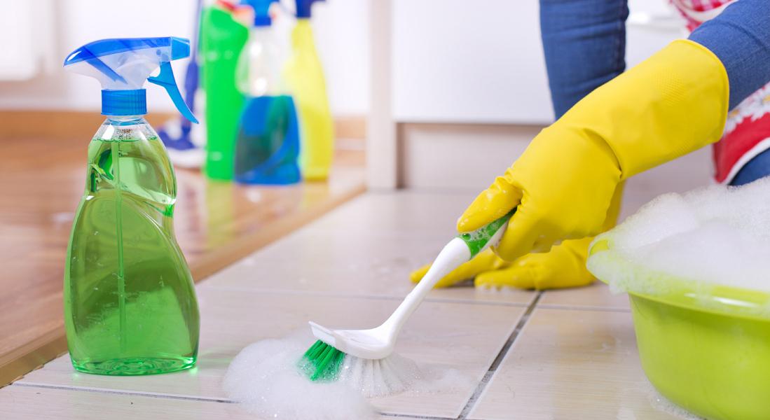 limpieza-del-hogar-prevenir-insectos